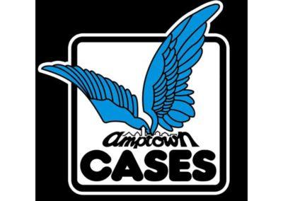 Amptown cases